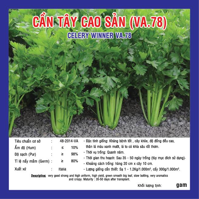 CẦN TÂY CAO SẢN (VA.78) 5gr