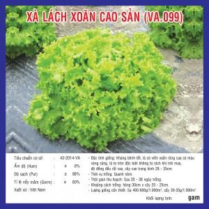 XÀ LÁCH XOĂN CAO SẢN (VA.099) 2gr