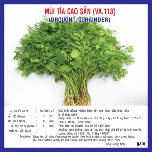 MÙI TÍA CAO SẢN (VA.113) 20gr