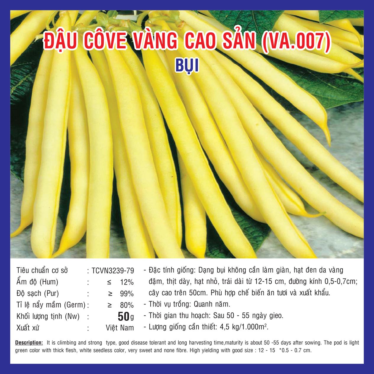 ĐẬU COVE VÀNG CAO SẢN (VA.007) 50gr