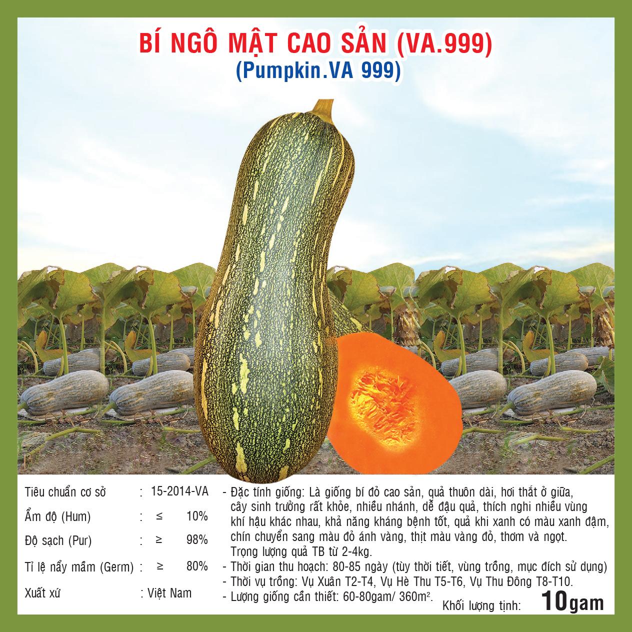 BÍ NGÔ MẬT CAO SẢN (VA.999) 10gr
