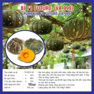 BÍ F1 FUTURE (VA.999) 10 hạt