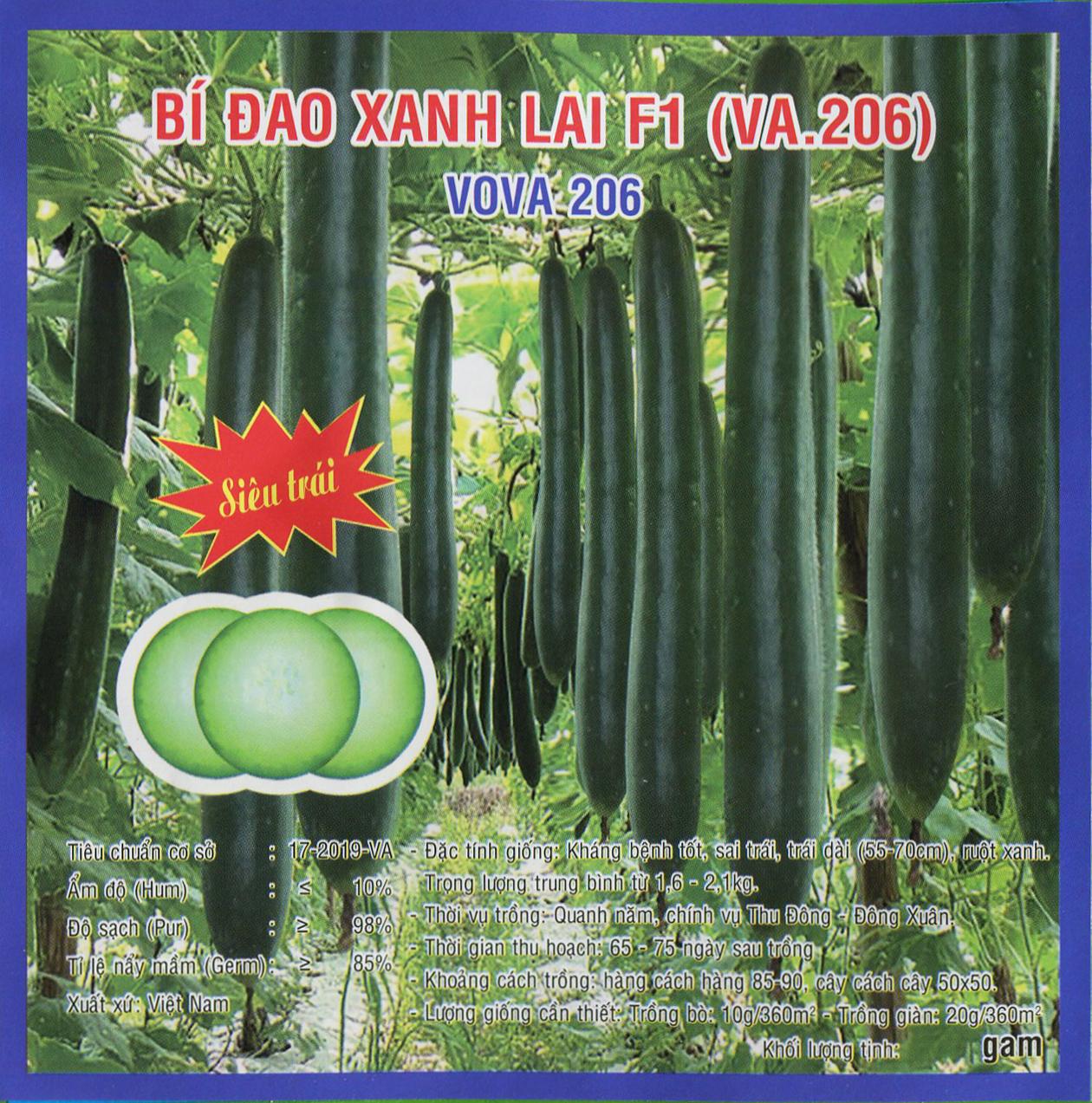 Hạt giống Bí đao xanh lai F1 (VA.206) – 10gram