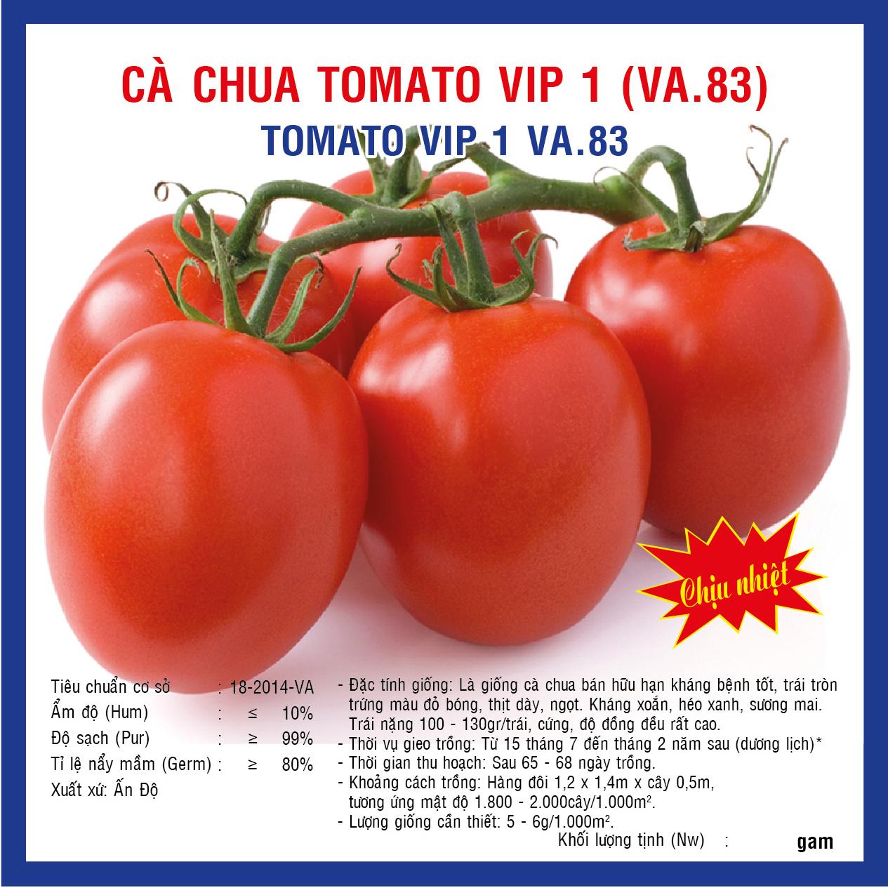 CÀ CHUA VIP TOMATO 1 (VA83) 5GAM