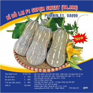 Hạt giống Bỉ đỏ lai F1 Super Sweet (VA.999) - 5gram