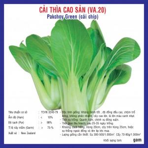 CẢI THÌA CAO SẢN (VA.20) - CẢI CHÍP 20G