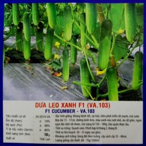 DƯA LEO XANH F1 (VA.103) 400 HẠT