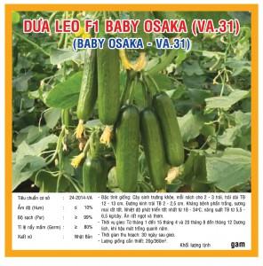 Dưa Leo F1 Baby Osaka (VA.31) - 20 hạt