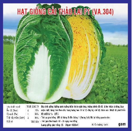 CẢI THẢO LAI F1 1G (VA.304)