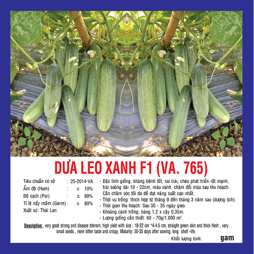 DƯA LEO XANH F1 (VA.765) 10G