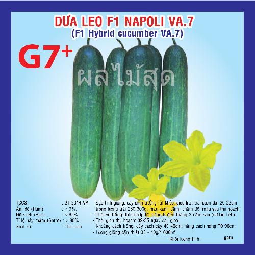 DƯA LEO F1 NAPOLI (VA.07) 2G