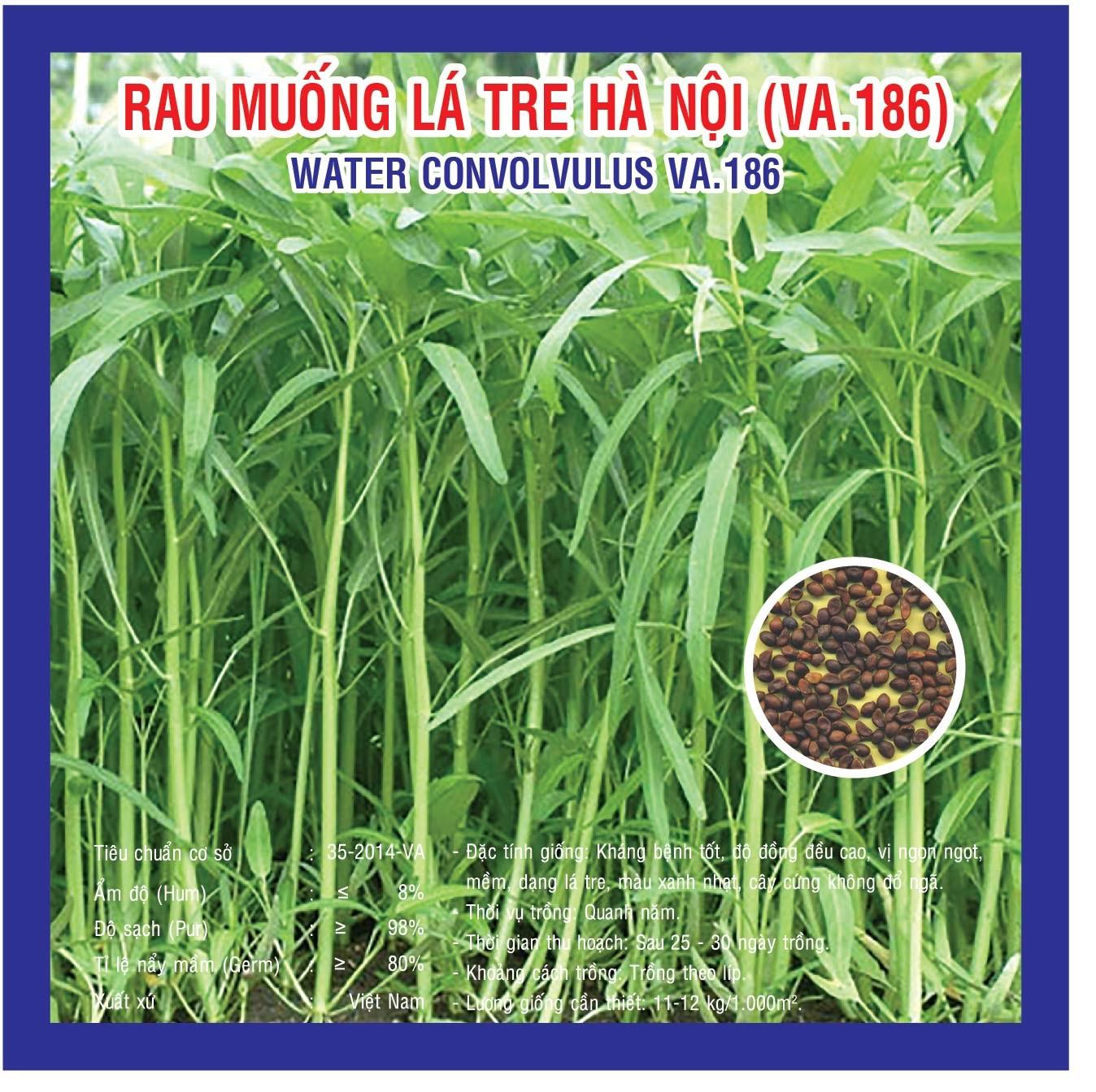 RAU MUỐNG CAO SẢN (VA.186) 100gr