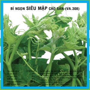 BÍ SIÊU NGON CAO SẢN (VA.308) 20gr
