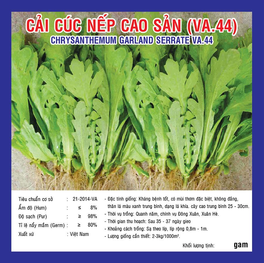 CẢI CÚC NẾP CAO SẢN (VA.44) 20GR