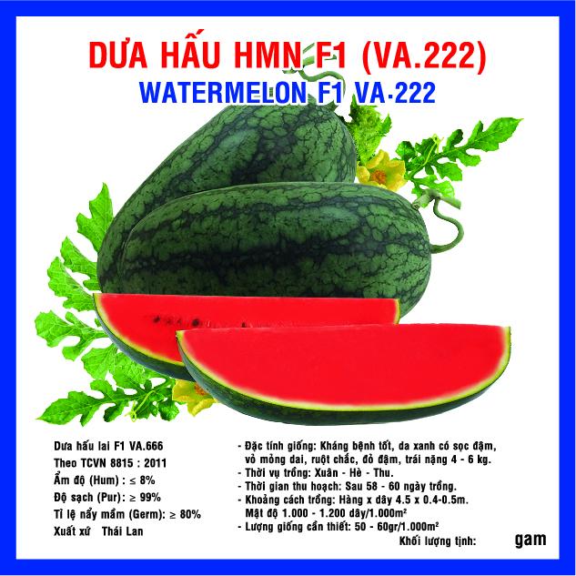 DƯA HẤU HMN F1 (VA.222) 5GR