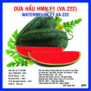 DƯA HẤU HMN F1 (VA.222) 10 gam