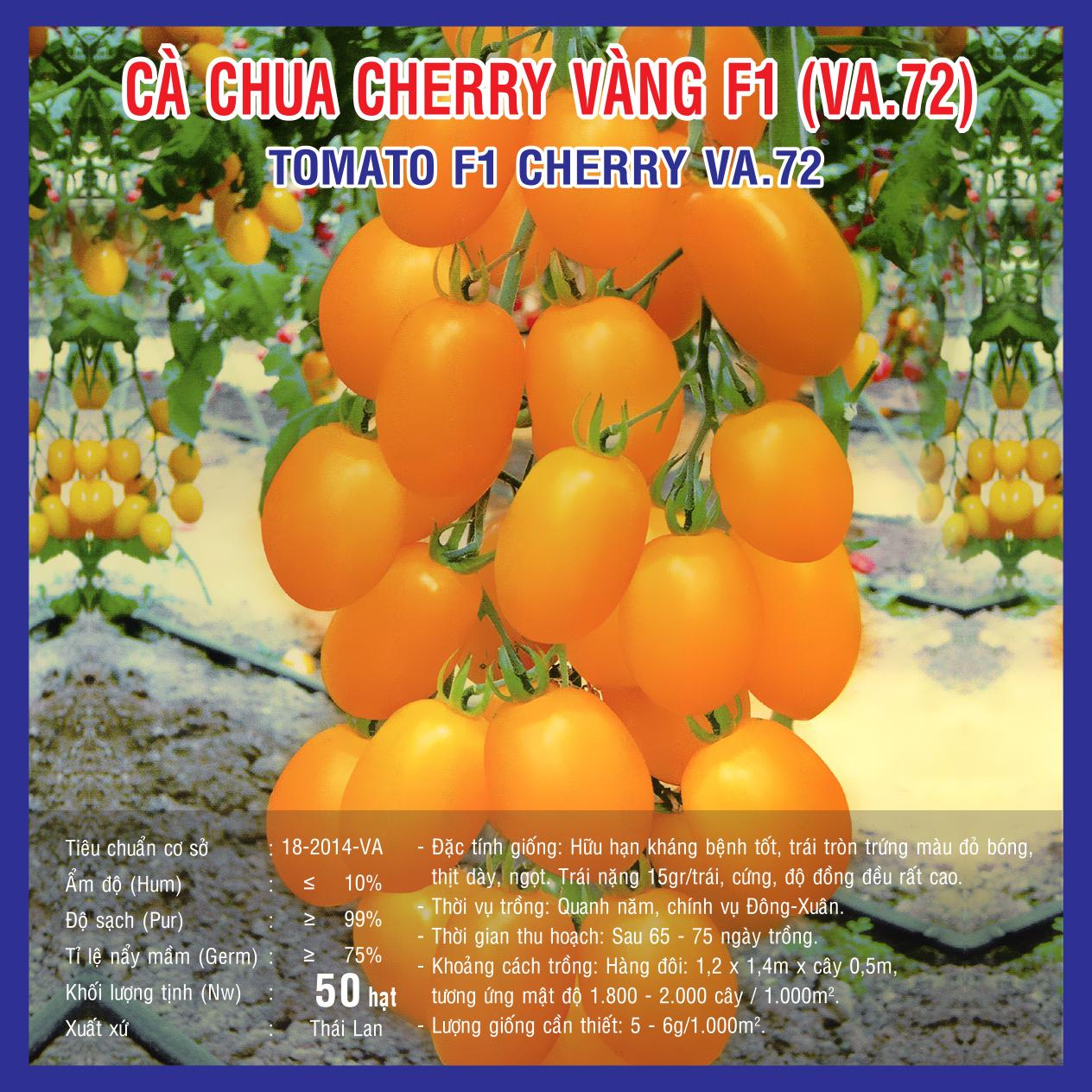 CÀ CHUA CHERRY VÀNG F1 (VA.72) 50 hạt
