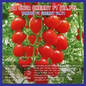 CÀ CHUA CHERRY ĐỎ F1 (VA.71) 50 hạt