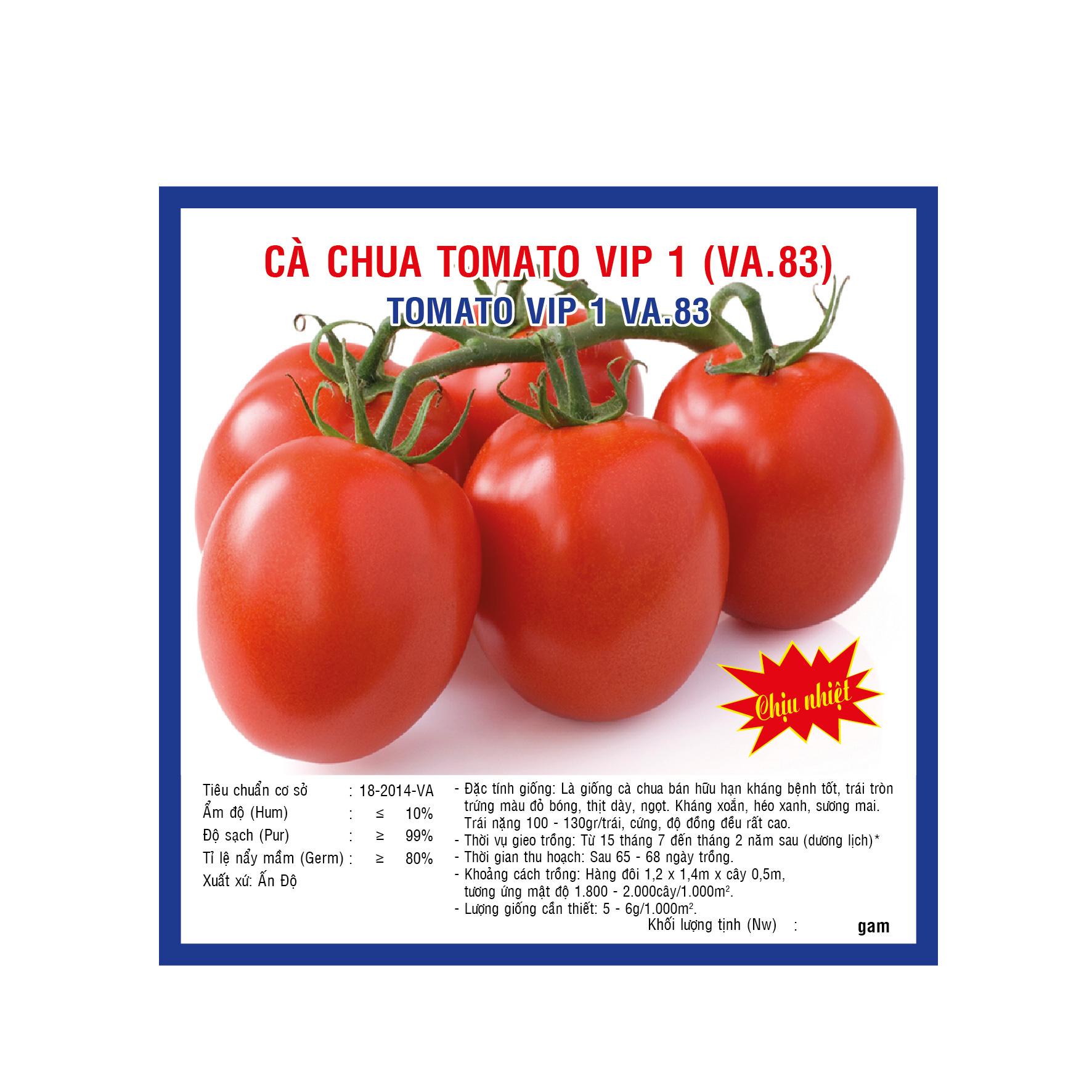 CÀ CHUA TOMATO VIP1 (VA83) 0.5GAM