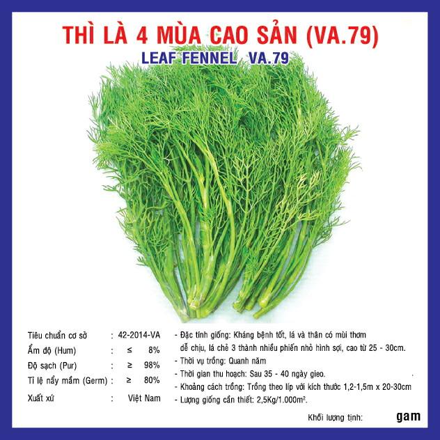 THÌ LÀ BỐN MÙA CAO SẢN (VA.79) 50GR