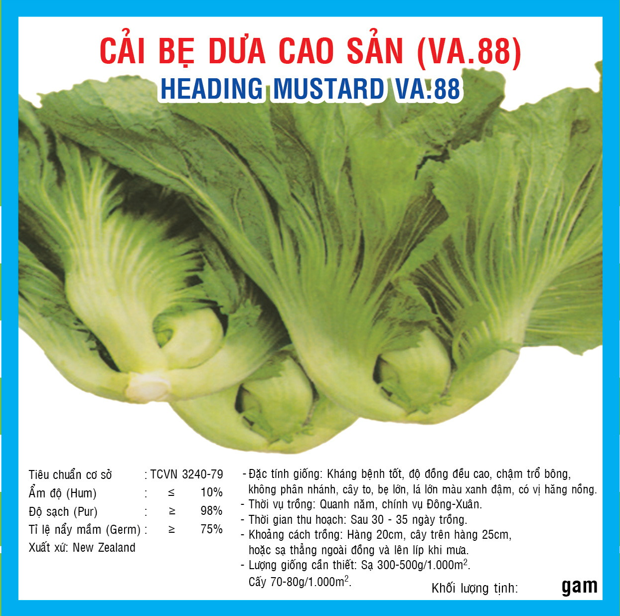 CAI BẸ DƯA CAO SẢN (VA.88) 50GR