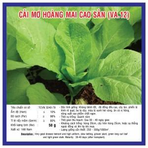 CẢI MƠ HOÀNG MAI CAO SẢN (VA.12) 50GR