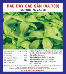 RAU ĐAY CAO SẢN (VA.708) 50GR