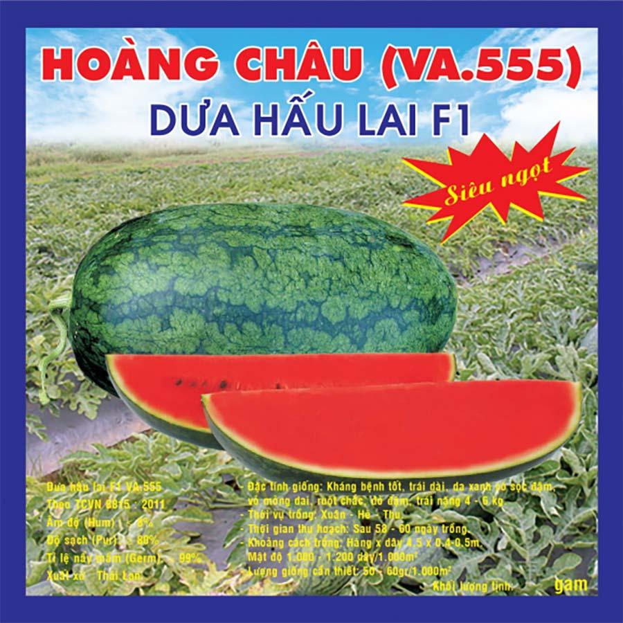 DƯA HẤU LAI F1 HOÀNG CHÂU (VA.555) 2gr