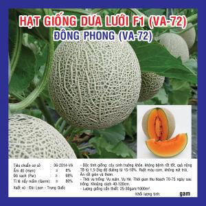 DƯA LƯỚI LAI F1 ĐÔNG PHONG VA72