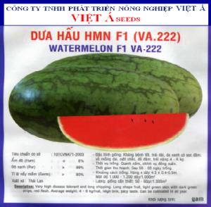 DƯA HẤU HMN F1 (VA.22) 20GR