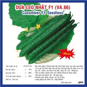 DƯA LEO NHẬT F1 (VA.66) 10GR