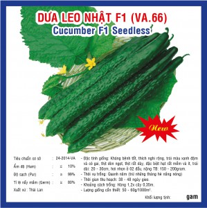 DƯA LEO NHẬT F1 (VA.66) 2GR