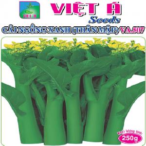 CẢI NGỒNG XANH THÂN MẬP (VA507) 250G