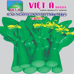 CẢI NGỒNG XANH THÂN MẬP (VA517) 20G