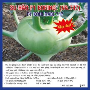 SU HÀO F1 BOEING VA747 10g